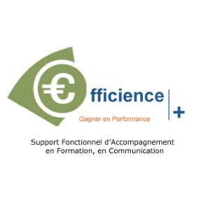 EFFICIENCE CONSEIL