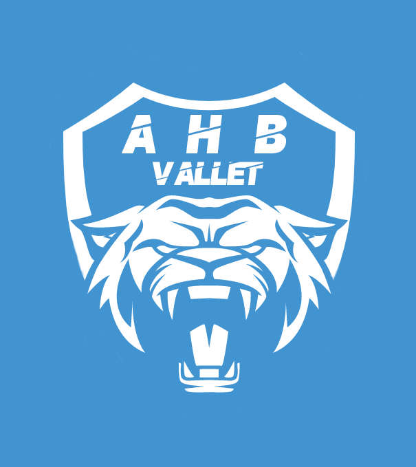 Logo Association Handball Vallet